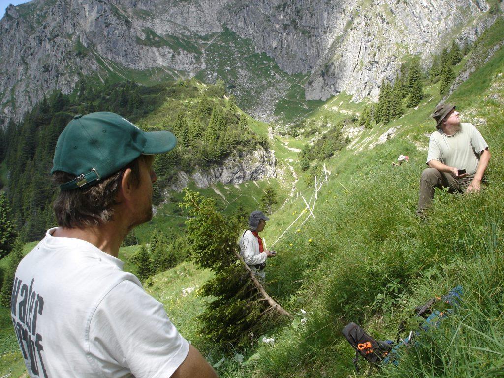 Alpenerkundung